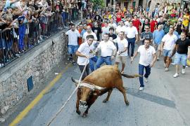 """Correbou in Fornalutx: """"Dann stirbt eben ein anderer Stier"""""""
