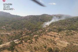 Waldbrand bei Andratx unter Kontrolle gebracht