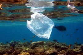 Einsprüche gegen Verbot von Plastiktüten