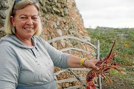 TV-Tipp: Was ist auf Menorca lecker?