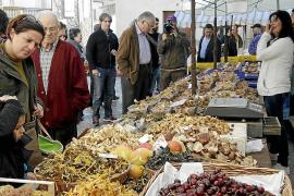 Die schönsten Agrarmärkte im Herbst auf Mallorca