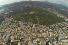 Giftaktion gegen Prozessionsspinner in Palma