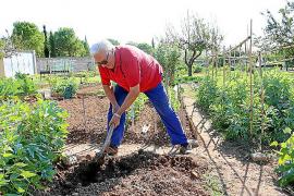 Die Senioren im Parc de Sa Riera legen selbst Hand an.