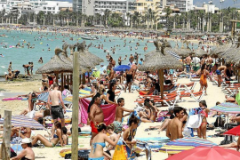 Familien bleiben Mallorca im kommenden Sommer treu