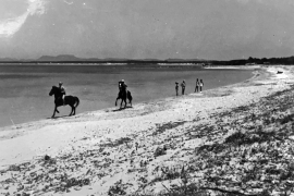 Als an Mallorcas Es-Trenc-Strand die Pferde badeten
