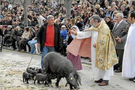 Zu Sant Antoni: Kirchlicher Segen für die Tiere