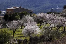 TV-Tipp: Mallorca außerhalb der Saison