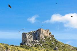 Finca Ternelles nur noch mit Wanderführer zugänglich