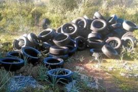 Der erste Fall ereignete sich am Dienstag in einem Naturschutzgebiet bei Lloret de Vistalegre im Zentrum der Insel.