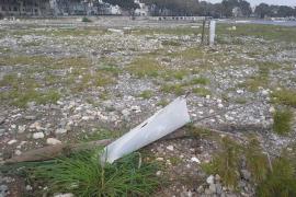 Unbekannte vernichten Jungbäume in Portocolom