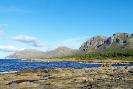 Acht Millionen aus Ökosteuer für Landgut Es Canons