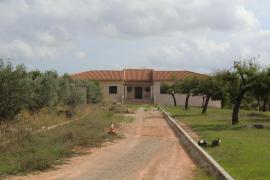 Inselrat verhängt Rekordstrafe für illegalen Hausbau