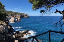 Der Frühling auf Mallorca legt jetzt richtig los