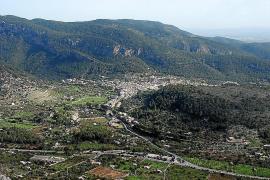 Bunyola ist am stärksten von der Borkenkäferplage betroffen.
