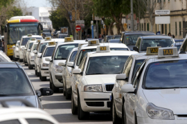 Neue Kurzhosenuniform für Palmas Taxifahrer