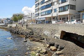 Stinkende Algen machen Bürger in Cala Gamba wütend