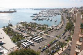 Der Paseo Marítimo in Palma aus der Möwenperspektive.