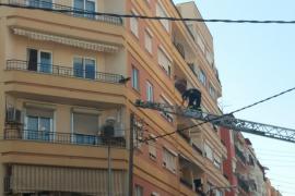 Feuerwehr rettet Hund von Balkon