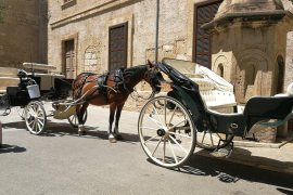 Stadt Palma verbietet Kutschen bei großer Hitze
