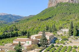 TV-Tipp: Traumgärten auf Mallorca