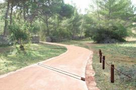 1,2 Millionen Euro für den Bellver-Wald