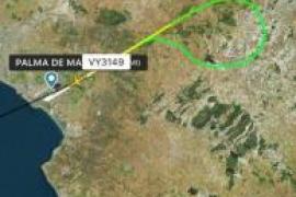 Vogelschlag trifft verspätetes Flugzeug aus Palma