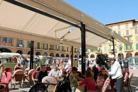 """""""Tiqueteros"""" ärgern Touristen in Palma de Mallorca"""
