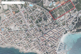 Protest gegen Reihenhaus-Bauvorhaben nahe Es-Trenc-Strand