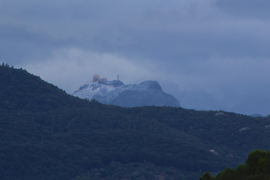 Braunschweiger Grau in Grau auf Mallorca