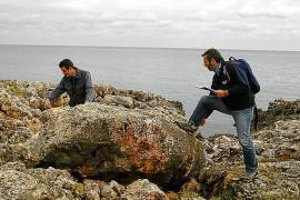 Forscher identifizieren mehr als 5000 Tsunami-Brocken