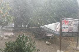 Heftige Windstöße reißen auf Mallorca Äste ab und wehen Zelte um