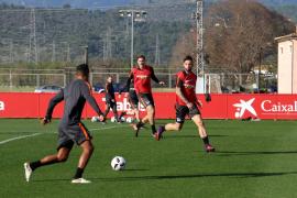1. FC Köln wird auf Mallorca trainieren