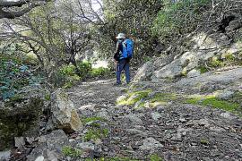 Mehr als 100 Umweltprojekte auf den Balearen