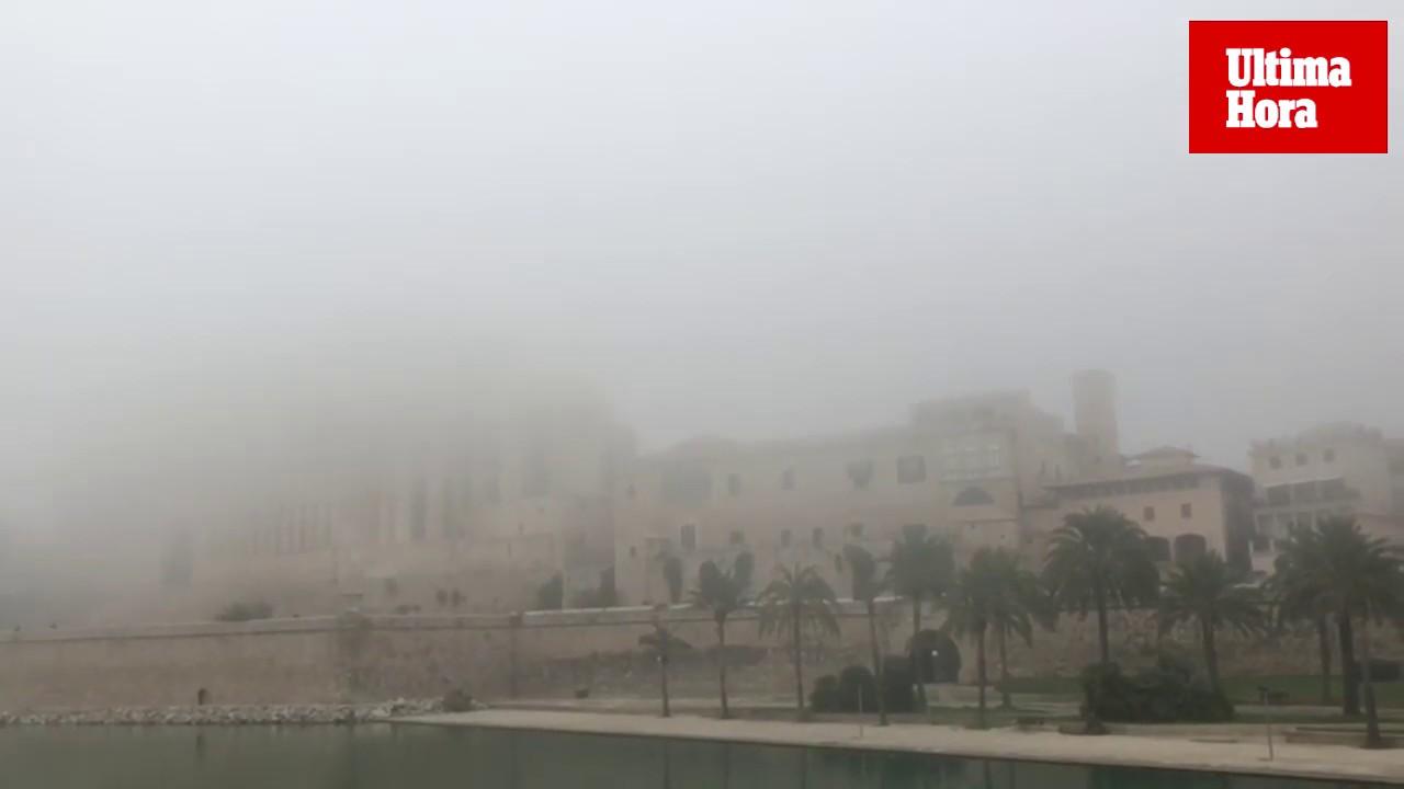 Dichter Nebel verursacht Flugstreichungen auf Mallorca