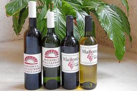 Wein-Event zugunsten der Flutopfer in Palma