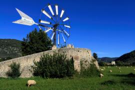 Nach fast 20 Grad drückt Wind die Temperaturen auf Mallorca