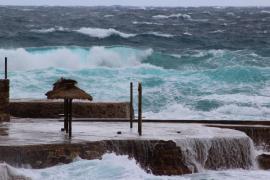 Warnstufe Gelb wegen starker Windböen ausgerufen