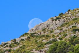 Relativ mildes Schönwetter-Wochenende auf Mallorca