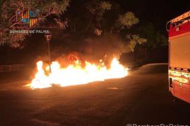 Einer der Brände aus der jüngsten Serie auf Mallorca.