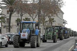 Bauern protestieren gegen neue Vogelschutzgebiete