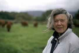 Rosamunde Pilcher verstorben – Mallorca-Film Samstag im ZDF