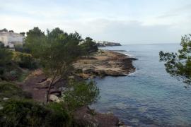 Die Februar-Sonne lacht bei bis zu 18 Grad auf Mallorca