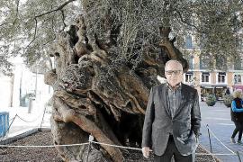 Rathaus ehrt Besitzer von legendärem Olivenbaum