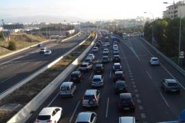 Schaf sorgt auf Ringautobahn um Palma für Chaos