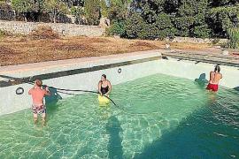 Bauchi & Co. befüllen bereits Pool auf der Ex-Becker-Finca