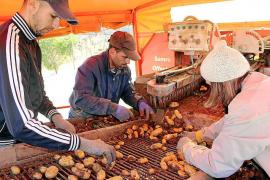 Kartoffeln für Briten und Skandinavier