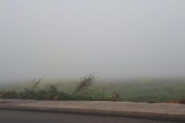 Nebel in Palma.