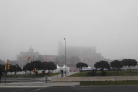 Nach dem Nebel kommt Sonne satt auf Mallorca