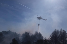 Waldbrand im Parc Llevante auf Mallorca