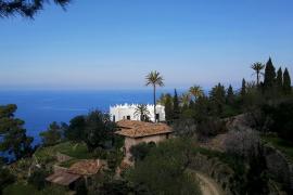 Trockenster Februar seit dem Jahr 2000 auf Mallorca